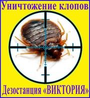 Дезостанция«ВИКТОРИЯ»,  уничтожение  клопов в Алматы и области.