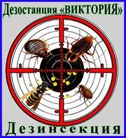 Дезостанция«ВИКТОРИЯ»,  дезинсекция (уничтожение насекомых) в Алматы и области.