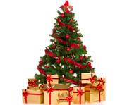 Новогодние елки оптом по СНГ