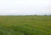 Продам землю в Карасайском районе