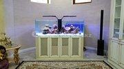 Мебель для аквариумов